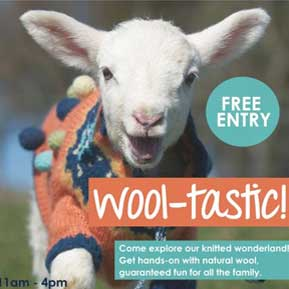 Wool-tastic! event at the National Museum of Scotland