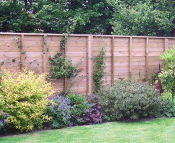 Jakoustic fence by Jacksons