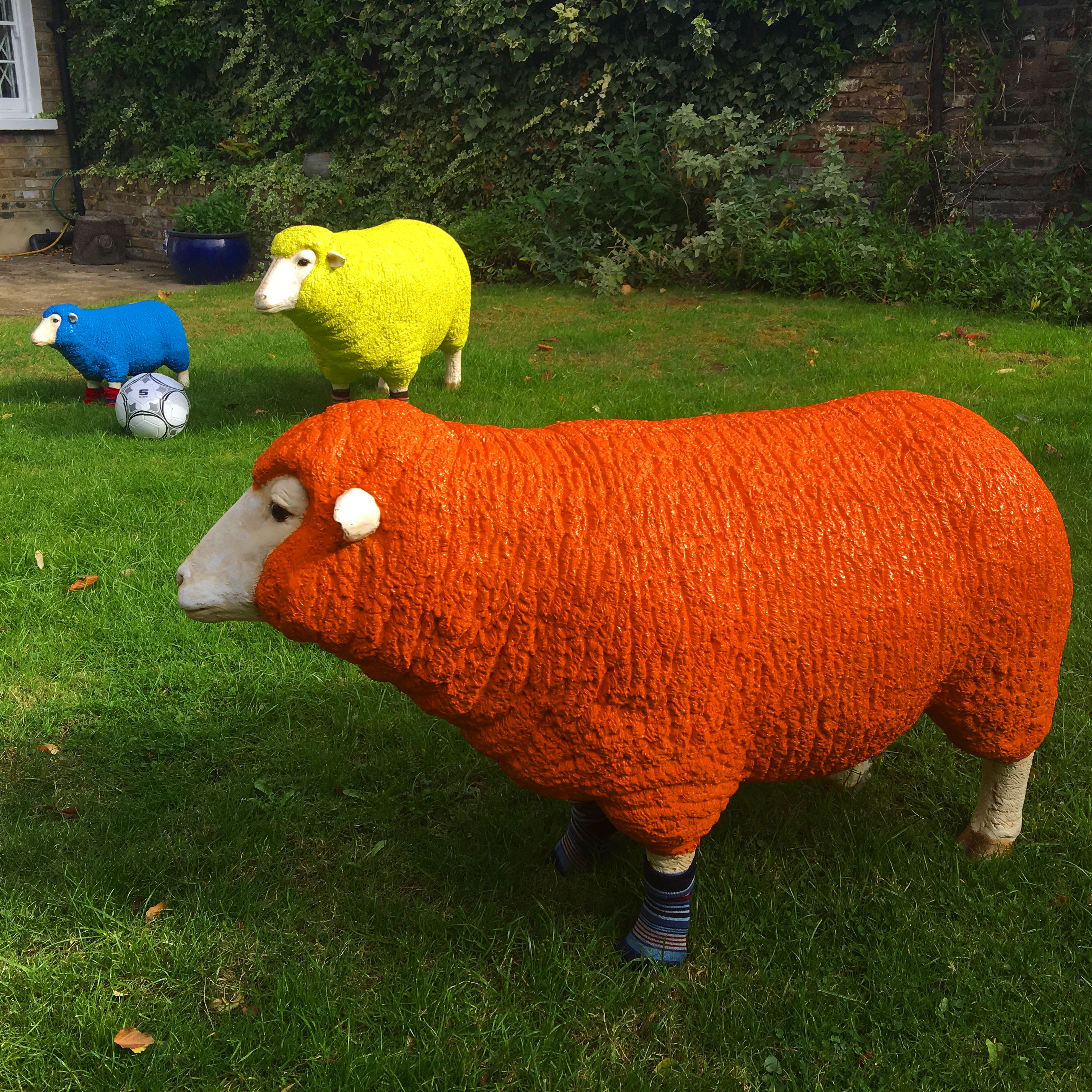 British Wool #woolweek