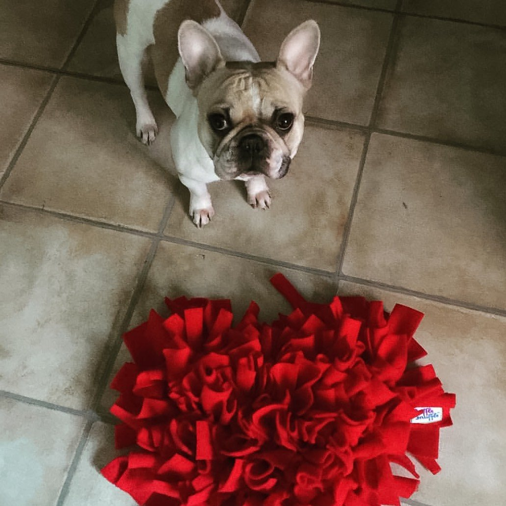 Ruffle Snuffle dog accessories