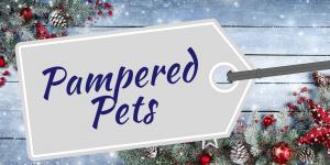 British Christmas pampered pets
