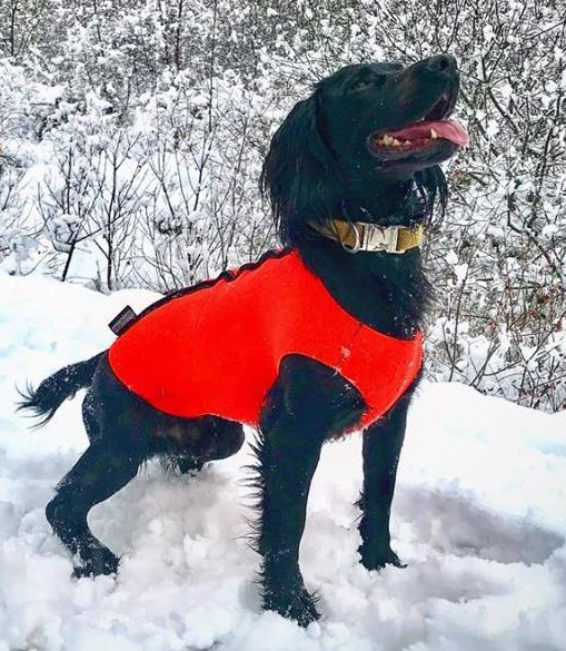 orange-wetsuit-snowshot