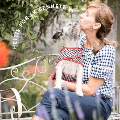 Hettie for LK Bennett pet collection
